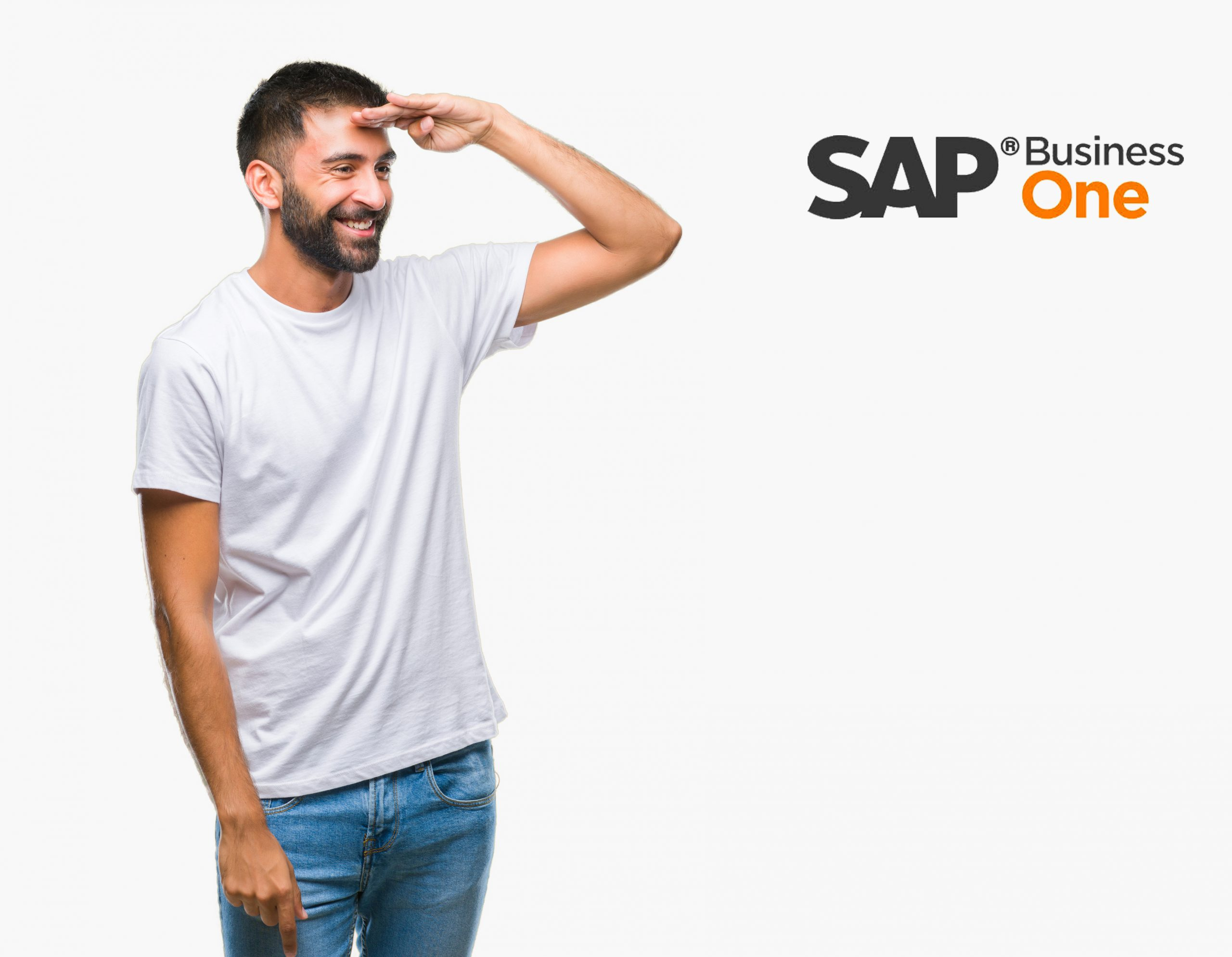 License Free Professional user in SAP Business One